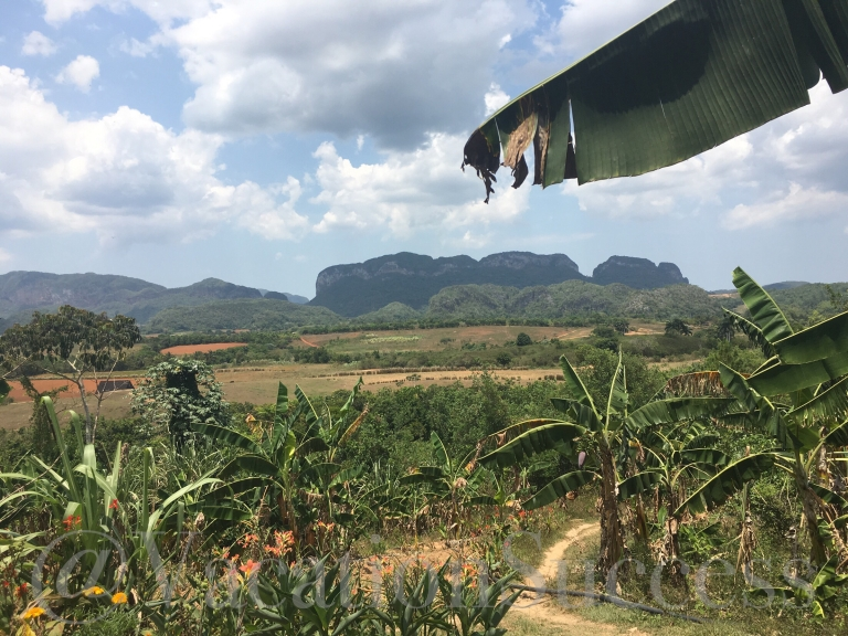 Finca agroecologica